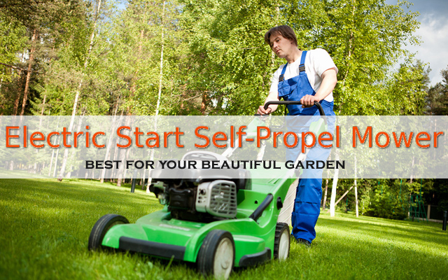 Lawn-Boy 21 inch Electric Start Self-Propel Mower (Model No: 10734)